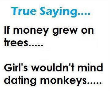 If Money Grew on Trees…